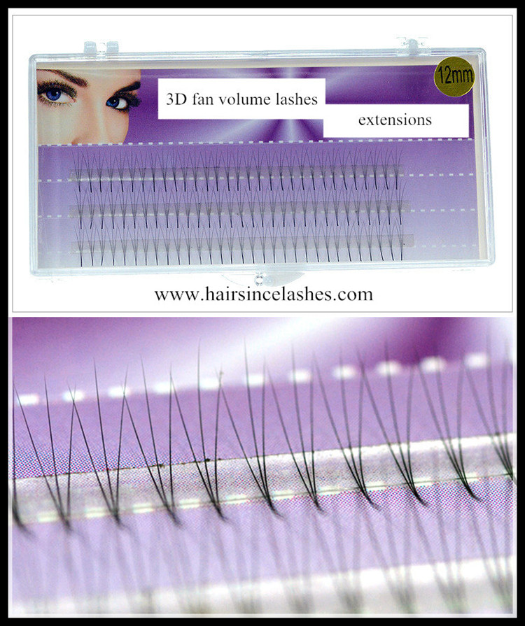 3D fan lashes extensions, silk hair lashes extensions wholesale price